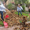 Members of the Batavia High School Dance Team – and their friends and siblings – raked leaves Sunday at six homes as part of Batavia United Way's Day of Caring. From left are coach Rebecca Bombard, Ivana Cortez, Megan Koif and Abby Kehe.