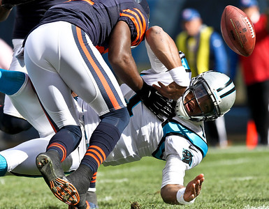 Josh Peckler - Jpeckler@shawmedia.com Carolina quarterback Cam Newton fumbles the ball near the end zone during the third quarter at Soldier Field Sunday, October 28, 2012.