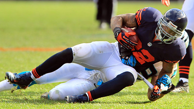 H. Rick Bamman - hbamman@shawmedia.com Bears' Matt Forte hauls in a Jay Cuttler pass on the drive in the closing minutes of the game against Carolina. The Bears won on a last second field gaol by Robbie Gould 23-22 Sunday, October 28, 2012.
