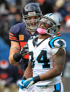 H. Rick Bamman - hbamman@shawmedia.com Brian Urlacher and the Panthers' DeAngelo Williams share a laugh during a time out between quarters Sunday, October 28, 2012.