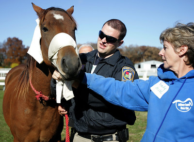 Monica Maschak - mmaschak@shawmedia.com Dave Bachman, a McHenry County Sheriff, ties a make-shift harness onto a horse in a training session for first responders in Woodstock on Saturday.  The session taught its participants how to handle horses in the event of an emergency.