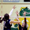 Prairie Ridge and Crystal Lake South Move on in Volleyball Regional :