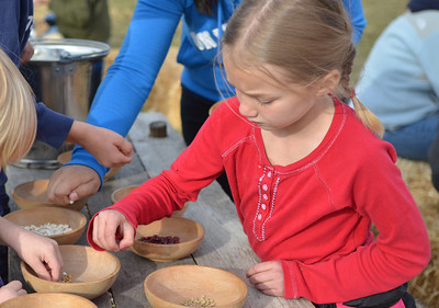 Monica Maschak - mmaschak@shawmedia.com Faith Bushey, 7, sorts beans at the Trail of History at Glacial Park on Saturday.  Activities gave young attendees a taste of what chores were like in the early settler days.