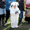 Joshua Trentham, 5, dressed as an English sheep dog, waits for the Lincoln Elementary School Halloween costume parade to begin in St. Charles Wednesday.(Sandy Bressner photo)