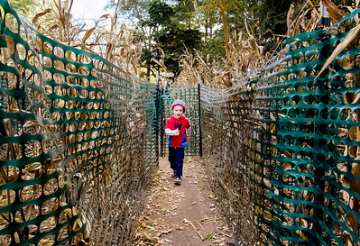 hnews_wed1014_Corn_Maze1.jpg