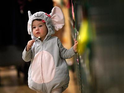 hcomm_adv_lollipop_mouse