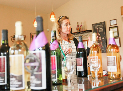 Candace H. Johnson Owner Deb Trombino talks about establishing her winery in the tasting room at the Vigneto del Bino Vineyard & Winery in Antioch.