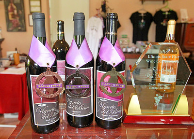 Candace H. Johnson-For Shaw Media Award winning wines are on display in the tasting room at the Vigneto del Bino Vineyard & Winery in Antioch.