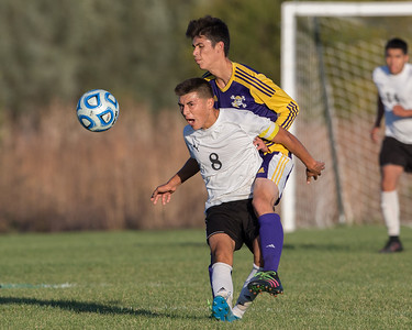 Harvard midfielder Alfredo Pichardo (8) and Belvidere defender Rodolfo Ponce Zepeda collide at the class 2A soccer regional final Saturday, Oct. 22nd, 2016 at Woodstock North High School in Woodstock. Belvidere wins 1-0. KKoontz- For Shaw Media