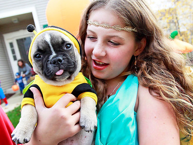 Candace H. Johnson-For Shaw Media Caitrin Myers, 11, of Fox Lake holds Claude Richard, a French bulldog puppy, while she goes trick-or-treating in the Valley Lakes subdivision in Round Lake.