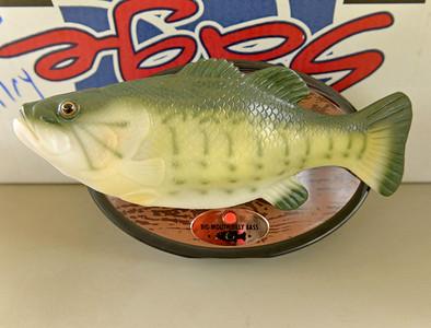 lnews-FishRelease05-1006-GEN