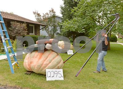 lnews-Pumpkin03-1003-DGR