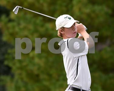 York Boys Golf