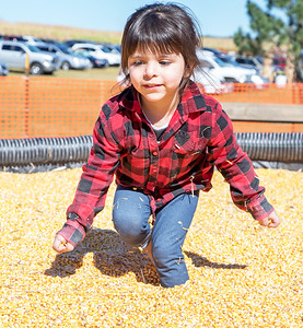 "Vivienne Solorio (3yrs) from Hampshire plays in the ""corn box"" at Cody's Farm during Settlers' Days in Marengo Sunday, October 8, 2017.  KKoontz- For Shaw Media"