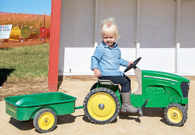 Abbi Nissen (2yrs) from Woodstock takes a spin on the tractor at Cody's Farm during Settlers' Days in Marengo Sunday, October 8, 2017.  KKoontz- For Shaw Media