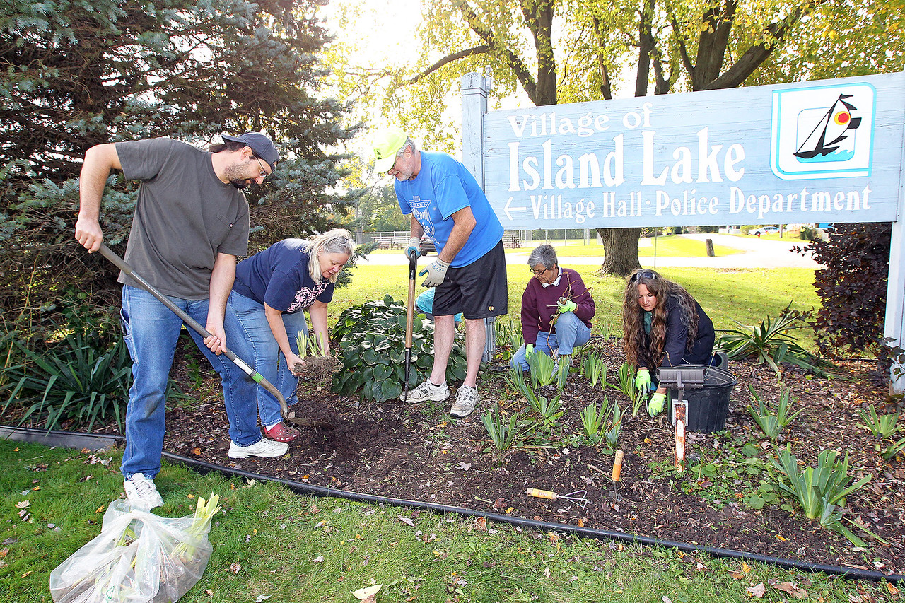 Candace H. Johnson-For Shaw Media Mark Beeson, Sandy Doehler, John Burke, trustees, Mary Schuman, and Christine Beeson (wife of Mark) plant iris rhizomes close to the Village of Island Lake Village Hall and Police Department sign on Greenleaf Avenue for the Irises of Island Lake project in Island Lake.