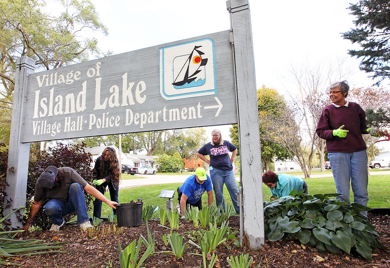 Candace H. Johnson-For Shaw Media Mark and Chrisine Beeson, John Burke, Sandy Doehler, Georgine Cooper and Mary Schuman, all of Island Lake plant iris rhizomes next to the Village of Island Lake Village Hall and Police Department sign for the Irises of Island Lake project in Island Lake.