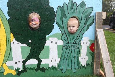 Candace H. Johnson-For Shaw Media Payton Kurtz, 4, of Salem, Wis., and her brother, Jacob, 1, have fun getting their picture taken in a fall cutout board during the Busy Brains Children's Museum Fall Family Festival at Lehmann Park in Lake Villa. (9/29/18)