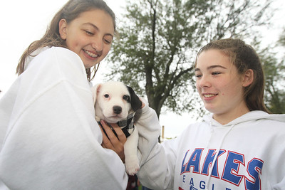Candace H. Johnson-For Shaw Media Kaylee Cavanaugh, of Lindenhurst and Alexis Kendall, of Lake Villa, both 13, give some attention to a puppy named, Charlotte, up for adoption from Wagging Hearts rescue during the Busy Brains Children's Museum Fall Family Festival at Lehmann Park in Lake Villa. Wagging Hearts is a foster based non-profit animal rescue organization based out of Hainesville. (9/29/18)