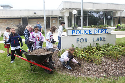 Candace H. Johnson-For Shaw Media Stanton Middle School students pull weeds and mulch in front of the Fox Lake Police Dept. on Route 59 during the Fox Lake Grade School District 114's 4th Annual Day of Service. (9/28/18)