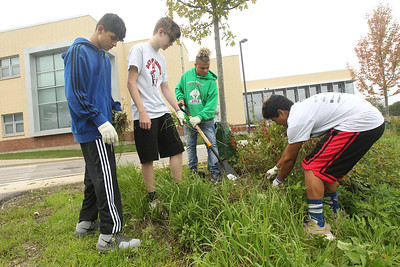Candace H. Johnson-For Shaw Media Stanton Middle School's Angel Covian and Kenneth Rybicki watch Cameron Lattimore help Lance Gallagher, all 13, of Fox Lake with pulling a large stray root out of the ground outside of Grant Community High School in Fox Lake during the Fox Lake Grade School District 114's 4th Annual Day of Service. (9/28/18)