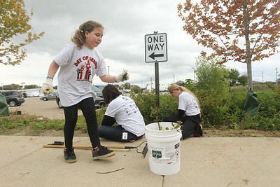 Candace H. Johnson-For Shaw Media Stanton Middle School's Isabelle Moran, 10, of Fox Lake puts weeds into a bucket as she works with Sarah Ferens, of Palatine, school psychologist, and Tabitha Sibley, 10, of Fox Lake as they pull weeds outside of Grant Community High School in Fox Lake during the Fox Lake Grade School District 114's 4th Annual Day of Service. (9/28/18)