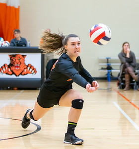 Crystal Lake Central's Grace Levin makes a save against Libertyville Thursday, October 25, 2018 at the Class 4A Regional finals match in Libertyville. Crystal Lake Central wins their fourth straight regional championship in two-straight sets. KKoontz – For Shaw Media