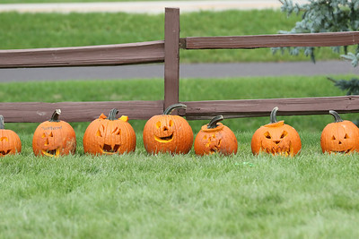 Candace H. Johnson-For Shaw Media Carved pumpkins line up along a fence made by children and their families for the Pumpkin Carving contest during the Grant Township & Village of Fox Lake Fall Festival at Grant Township Center in Ingleside.  (10/6/19)