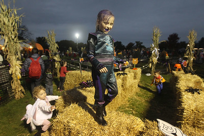 Candace H. Johnson-For Shaw Media Lana Bell, 2, of Grayslake tries to keep up with her sister, Chloe Bachert, 7, as they make their way through the corn maze during the Haunted Trail and Bonfire at Forest View Park in Lindenhurst. The event was hosted by the Lindenhurst Park District. (10/19/19)