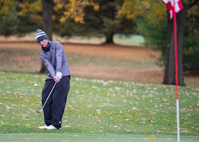 Morris golfer Eric Peterson chips onto the No. 4 green  in the Class 2A Freeport Sectional golf tournament on Monday, Oct. 12, 2020.