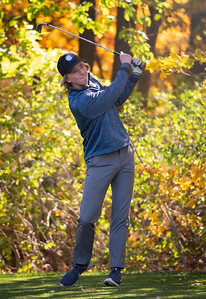 Lake Zurich's Brandon Koester tees off of hole No. 11 in the Class 3A Rockford Sectional golf tournament on Thursday, Oct. 15, 2020. Randy Stukenberg for Shaw Media