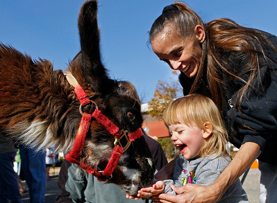 Brett Moist/ For the Northwest Herald  Brenda Forsyth and two year old daughter, Emily feed a lama at the petting zoo during the annual Johnny Appleseed Festival in downtown Crystal Lake on Saturday.
