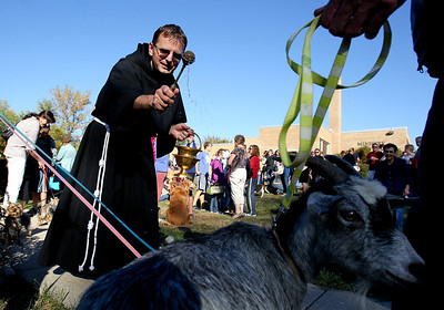 "Mike Greene - mgreene@shawmedia.com Father Andrzej Brzezienki of St. Margaret Mary Church blesses goats owned by the Brandt family of Barrington Hills during the second annual ""Blessing of Animals"" at the church Sunday, September 30, 2012 in Algonquin. Over 100 individuals came out with their pets-- which ranged from hermit crabs and mice to dogs and goats-- for the traditional Franciscan blessing as well as a raffle for small prizes."