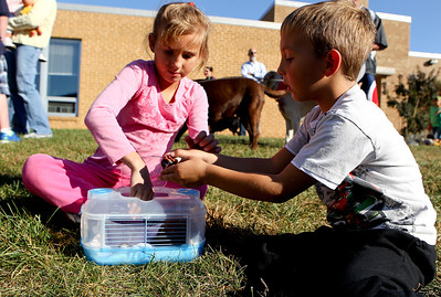 "Mike Greene - mgreene@shawmedia.com Christina Beyer, 7 of Algonquin, and her brother Kevin, 5, put their hermit crabs back into the cage before the start of the second annual ""Blessing of Animals"" at St. Margaret Mary Church Sunday, September 30, 2012 in Algonquin. Over 100 individuals came out with their pets-- which ranged from hermit crabs and mice to dogs and goats-- for the traditional Franciscan blessing as well as a raffle for small prizes."
