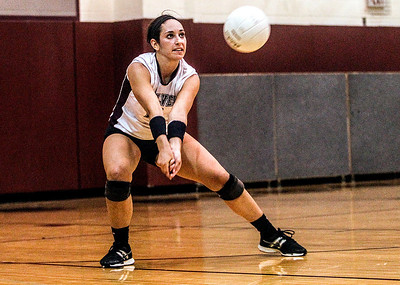 Sarah Nader -  snader@shawmedia.com Prairie Ridge's Olivia Hanley returns the serve during Tuesday's volleyball game against Crystal Lake Central in Crystal Lake September 3, 2013. Crystal Lake Central won, 2-0.