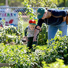Von Lautenschlager, 4, and his mom, Naomi, look at some of the vegetables browning in the garden at Western Avenue School in Geneva following a dedication ceremony. The garden's reading circle was dedicated to former WAS teacher Mary Bencini. Womack was instrumental in planning the garden.