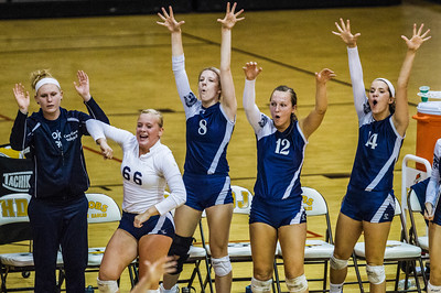 Kyle Grillot - kgrillot@shawmedia.com   The Cary-Grove bench celebrates after a scored point during the first period of the girls volleyball match at H. D. Jacobs High School Thursday, September 19, 2013. Cary-Grove won the match.