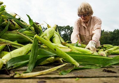 Hnews_adv_Corn_Harvest_12.jpg