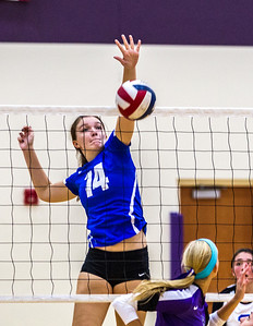 Hspts_Fri_0919_Vball_Hamp_Wood_Gelasi_1.JPG