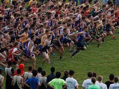 hcomm_adv_Lotsa_Runners