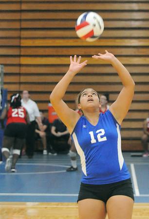 Lyons Township hosts quad volleyball meet