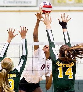 hspts_fri0802_VBALL_CLS_PR_COVER1.jpg