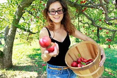 LCJ_0929_Apple_Orchard_A