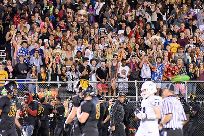 Hinsdale South fans cheer on their team during the game against Glenbard West on Friday, September 2nd. Lorae Mundt for Shaw Media