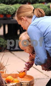 Jess McCann of Western Springs helps daughter Lydia , 18 months, pick a pumpkin just the right size at Wannamaker's Home and Garden Fall Festival on Saturday, Septemer 24 in Downers Grove.  Steve Bittinger for Shaw Media
