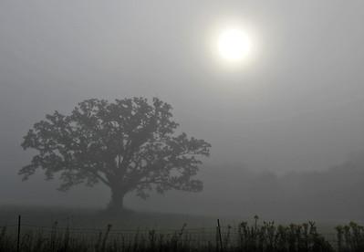 hnews_thu914_fog_sun