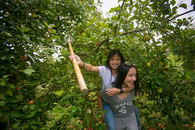 hplay_thu921_rof_orchard_1.JPG