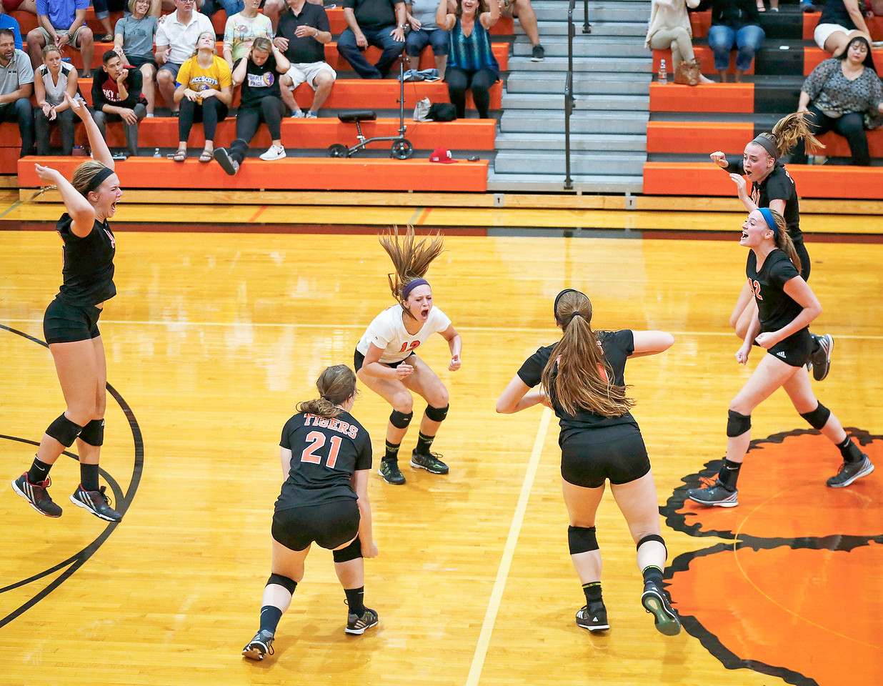 Crystal Lake Central players celebrate game point in their second game against Huntley at Crystal Lake Central High School on Thursday, September 21, 2017 in Crystal Lake, Illinois. The Tigers won the set in 2 games; 25-20, 25-23. John Konstantaras photo for Shaw Media