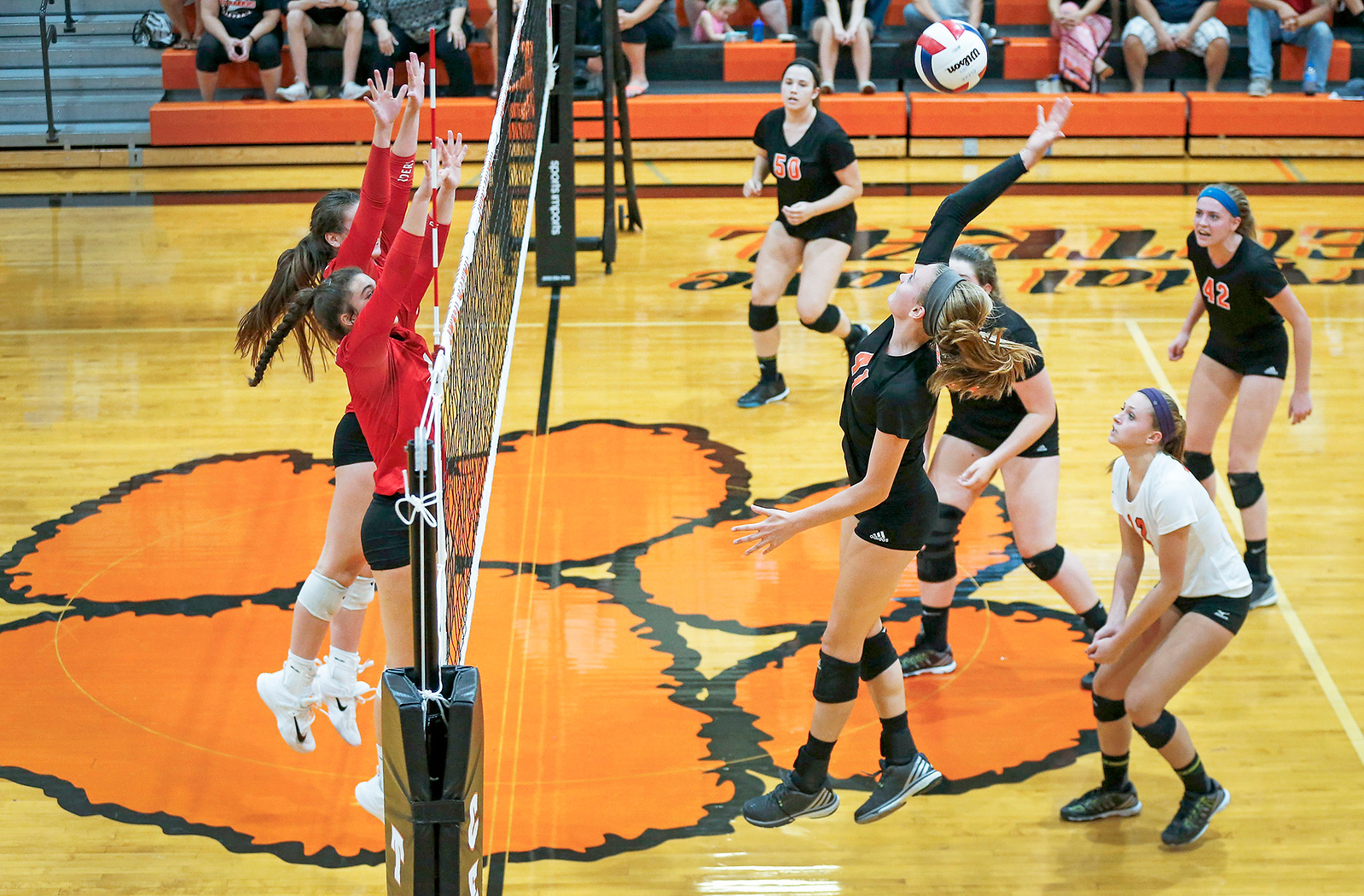 Emily Kelly (41) from Crystal Lake Central hits a ball at the net during their first game against Huntley at Crystal Lake Central High School on Thursday, September 21, 2017 in Crystal Lake, Illinois. The Tigers won the set in 2 games; 25-20, 25-23. John Konstantaras photo for Shaw Media