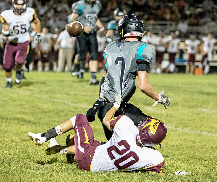Richmond-Burton defensive back Alex Perez (20) causes a turnover by Woodstock North receiver Carter Coalson (2) Friday, September 22, 2017 in Woodstock. It wasn't enough as Woodstock went on to win 35-3. KKoontz- For Shaw Media